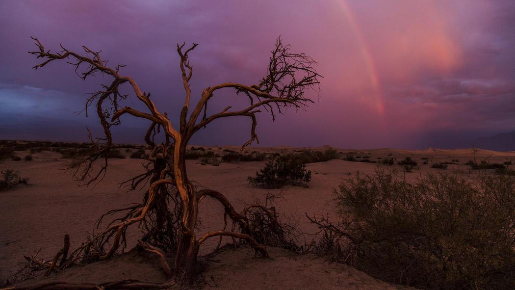 Death-Valley08