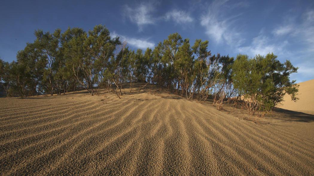 Death-Valley17