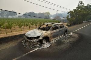 Лесной пожар в Лейк каунти прервал славянский фестиваль