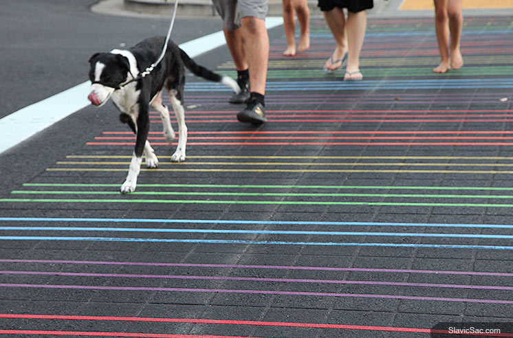 rainbow-crosswalk