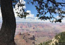 Национальные парки и заповедники США