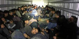нелегальных иммигрантов