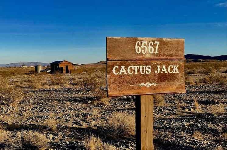 05-cactus