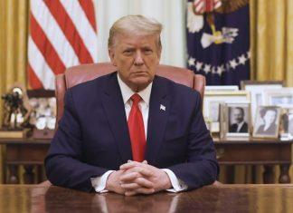 Дональд Трамп (Donald Trump)